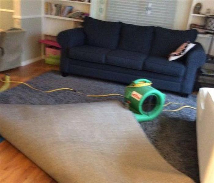 Water Damage Ann Arbor hardwood & area rug water extraction