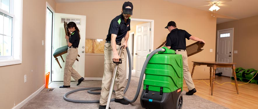 Ann Arbor, MI cleaning services